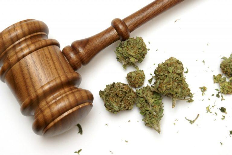 Legalizzazione Cannabis tra incertezze e contraddizioni. Il quadro normativo riguardante la cannabis in Italia si basa, sostanzialmente, su due leggi.