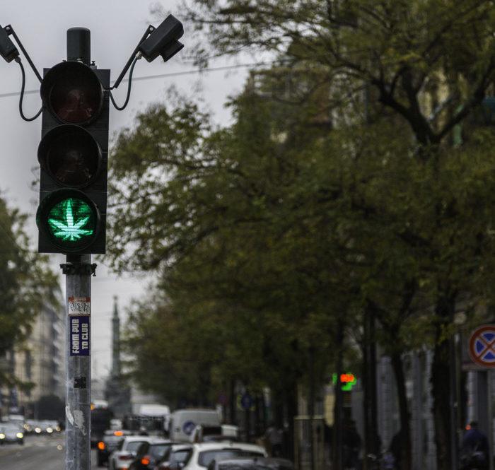 Weed Leaf Traffic Signal Green Light
