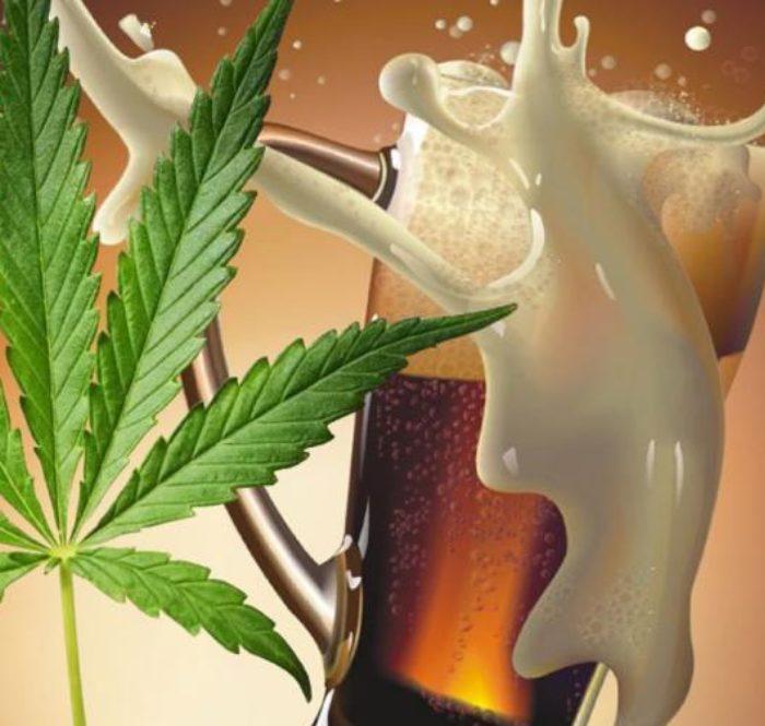 Birraecannabis