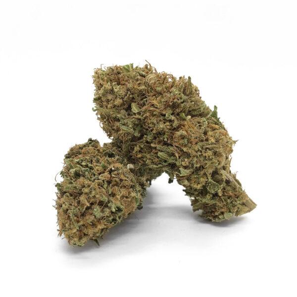 La Blueberry Kush ha infiorescenze compatte e resinose. Il suo nome deriva dalle tonalità bluastre dei fiori e delle foglie.