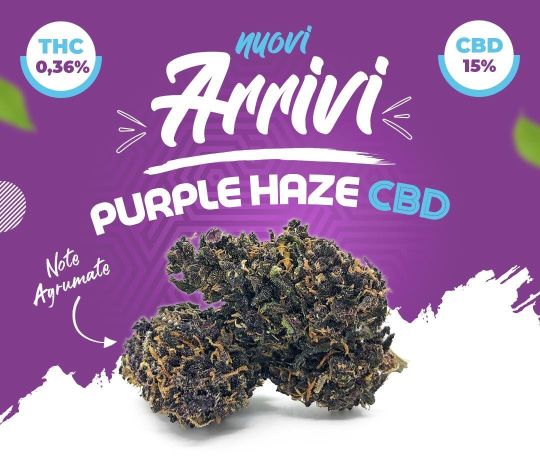 Banner purple haze sito 2
