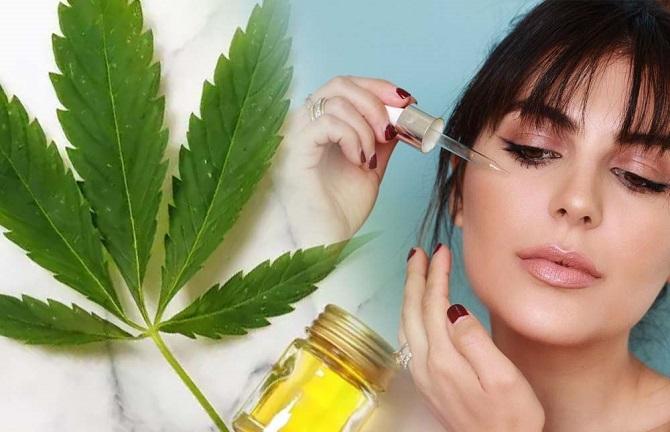 Proprietà e benefici dell'olio di cannabis