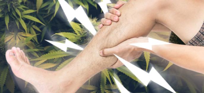 Usare la cannabis per combattere il sovraffaticamento muscolare