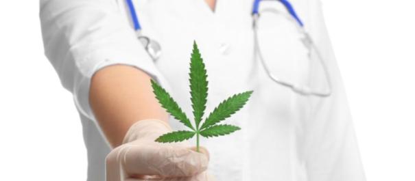 Le proprietà antidolorifiche della cannabis