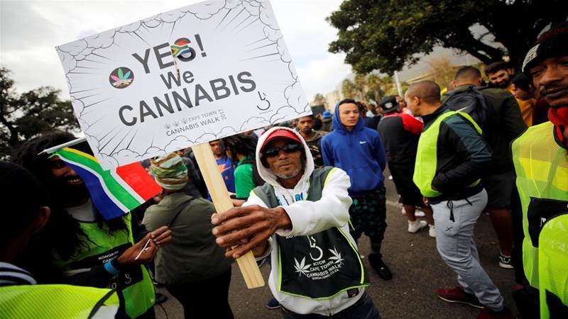 Cannabis Sudafrica