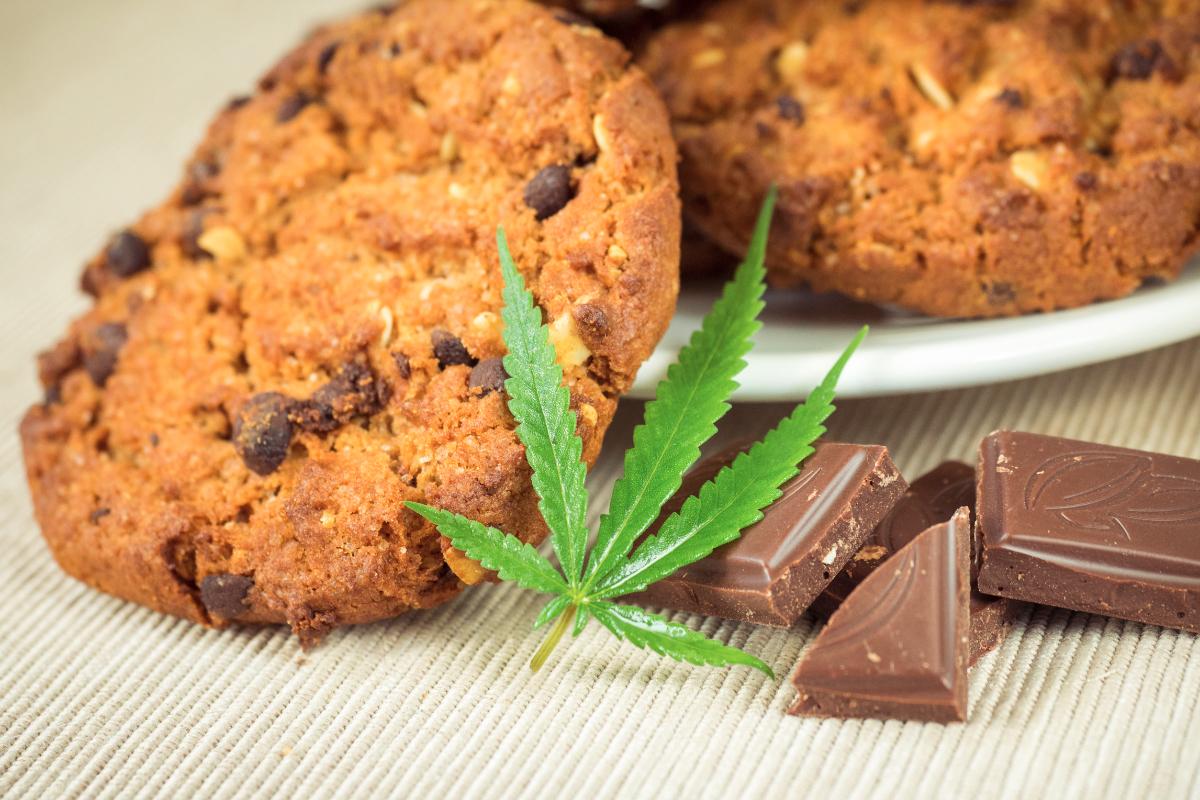 La marijuana offre un ampio spazio all'immaginazione e alla creatività anche in cucina. In questo articolo illustreremo dunque come preparare i biscotti alla marijuana.