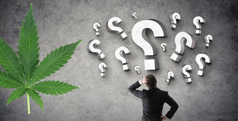 Secondo quanto stabilito dalla sentenza delle Sezioni Unite della Corte di Cassazione del 19 Dicembre 2019, coltivare marijuana in casa, qualora le piante siano destinate al solo uso personale, non costituirebbe alcun reato.