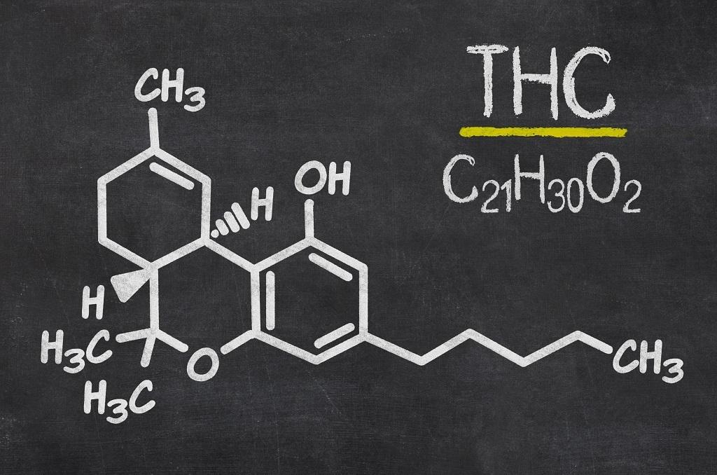 Quanto dura il Thc nel corpo e per quanto tempo è rilevabile dai test