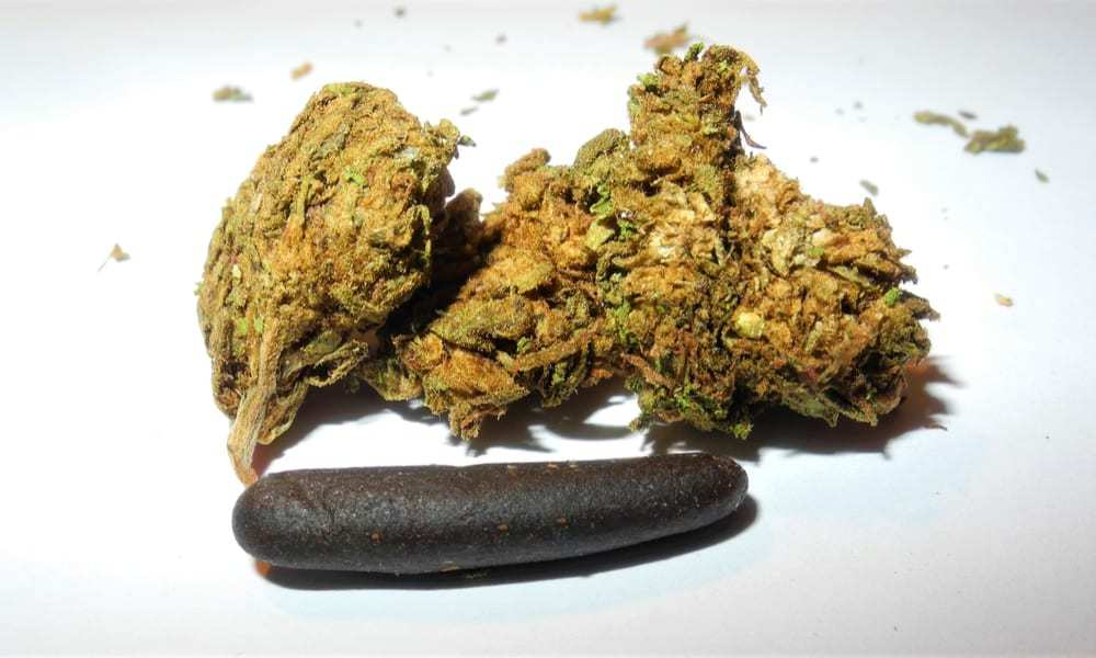 Differenze tra hashish e marijuana