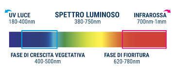 Calcolare la quantità di luce e la resa luminosa ideale