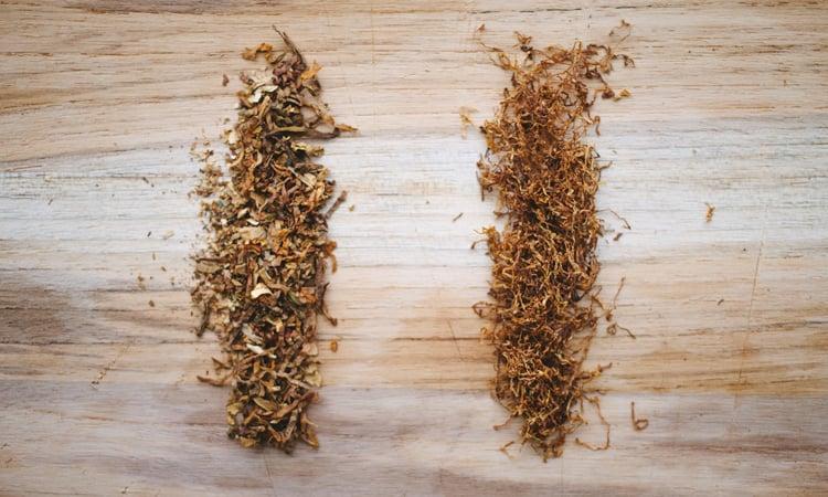 Tabacco secco e tabacco umido